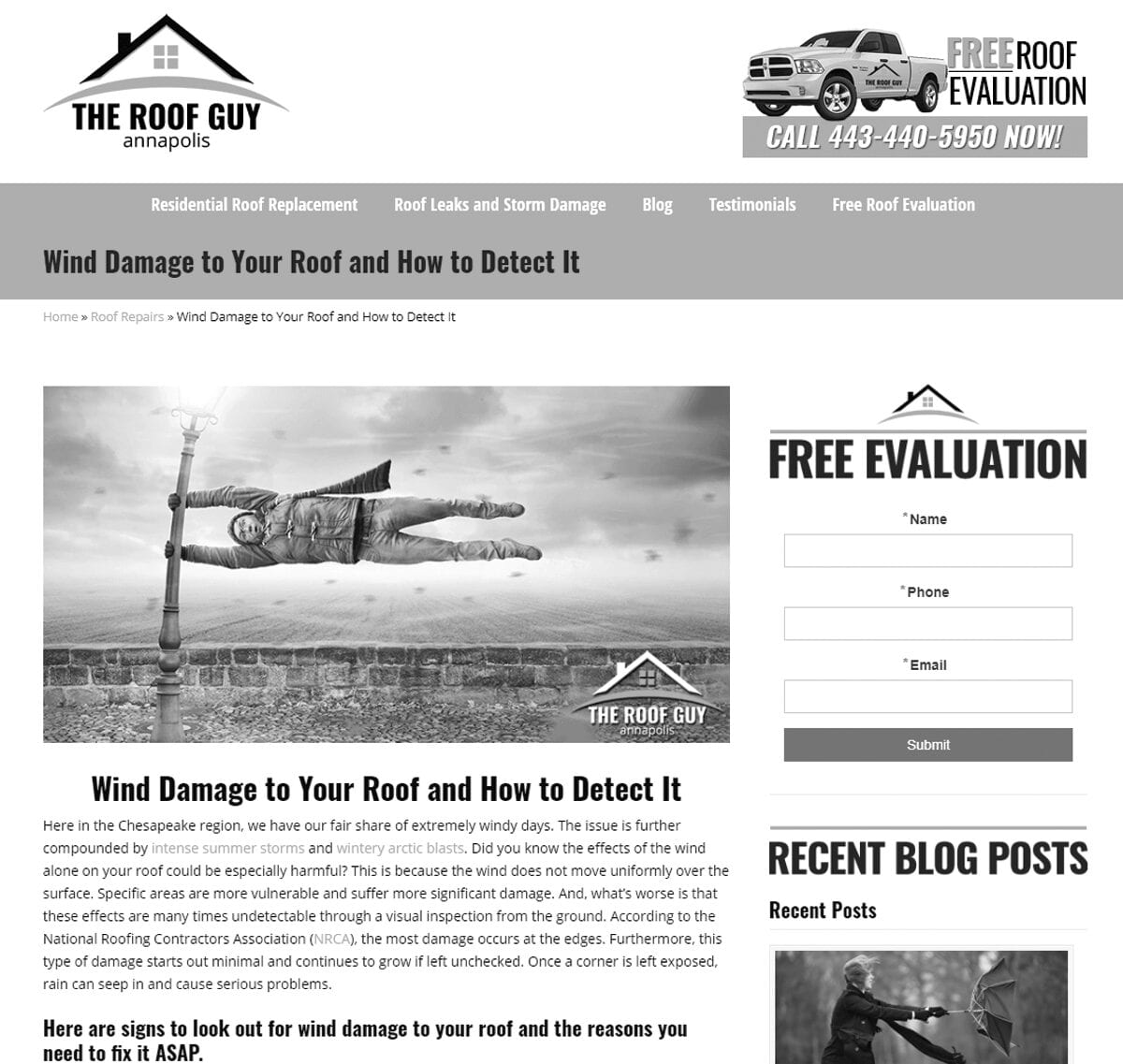 the roof guy home page 2